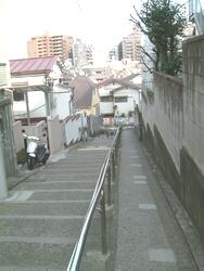 20070225-14.jpg