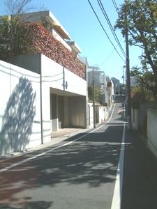20070318-1.jpg